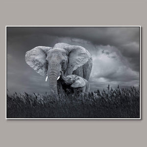 african-strength Framed Canvas