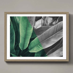 Tropical leaves - halftone
