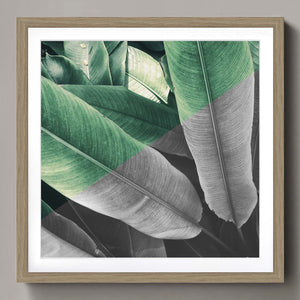 Tropical leaves half tone