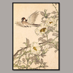 Bird and flower Framed Canvas