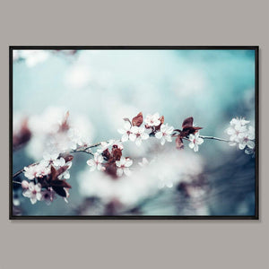 Cherry blossom Framed Canvas