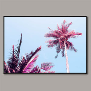Fluffy palm tree Framed Canvas