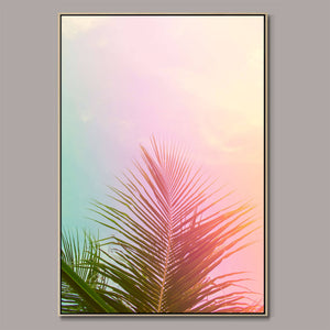 Palm tree leaves Framed Canvas