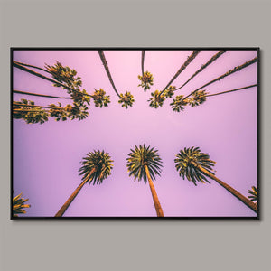 Palms boulevard Framed Canvas