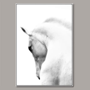 Strength in silence Framed Canvas