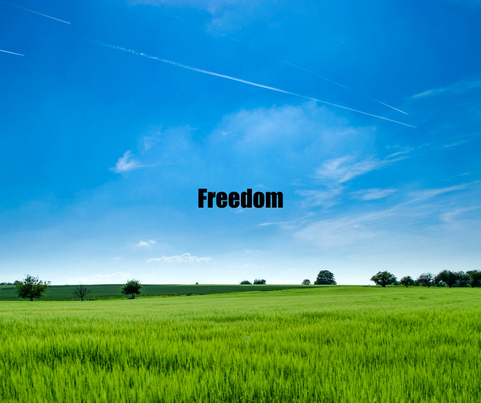 Are We Really Free?