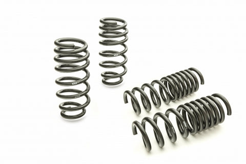 Eibach Pro-Kit Performance Lowering Springs 11-19 Dodge Charger (V6 3.6L & V8 5.7L) RWD