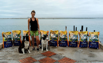 Donating 250kg Of Dog Food To AWS
