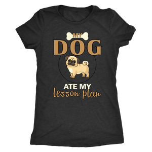 """My Dog Ate My Lesson Plan"" Women's Triblend T-Shirt"