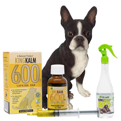 King Kalm 600mg Hemp Oil For Boston Terriers + FREE Klean Bed Spray