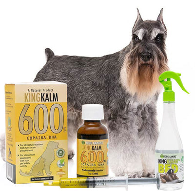King Kalm 600mg Hemp Oil For Miniature Schnauzers + FREE Klean Bed Spray