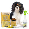 King Kalm 600mg Hemp Oil For King Charles Spaniels + FREE Klean Bed Spray