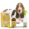 King Kalm 600mg Hemp Oil For Basset Hounds + FREE Klean Bed Spray