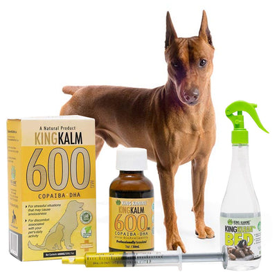 King Kalm 600mg Hemp Oil For German Pinschers + FREE Klean Bed Spray