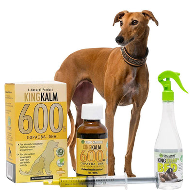 King Kalm 600mg Hemp Oil For Greyhounds + FREE Klean Bed Spray