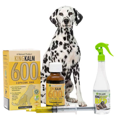 King Kalm 600mg Hemp Oil For Dalmatians + FREE Klean Bed Spray