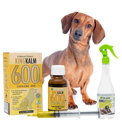 King Kalm 600mg Hemp Oil For Dachshunds + FREE Klean Bed Spray