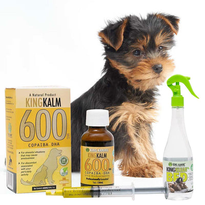 King Kalm 600mg Hemp Oil For Yorkshire Terriers + FREE Klean Bed Spray