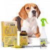 King Kalm 600mg Hemp Oil For Beagles + FREE Klean Bed Spray