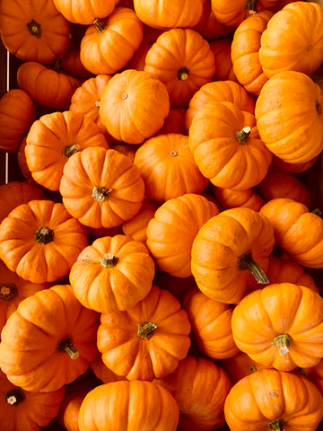Benefits of Pumpkin Skincare You Do Not Want to Miss This Fall I Mirra Skincare