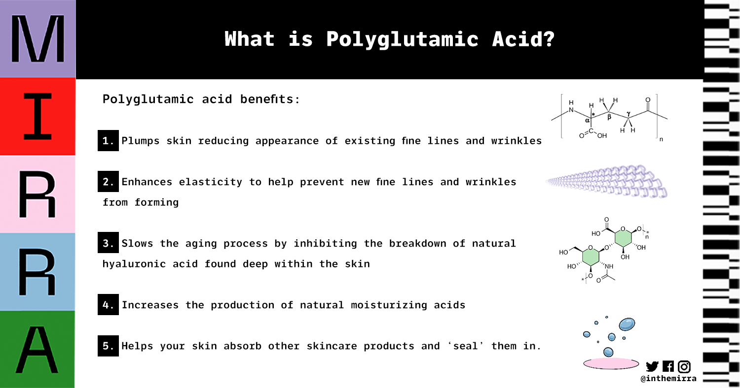 what is polyglutamic acid mirra skincare infographic skincare products