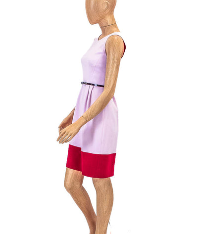 """Tiff"" Color Block Dress"