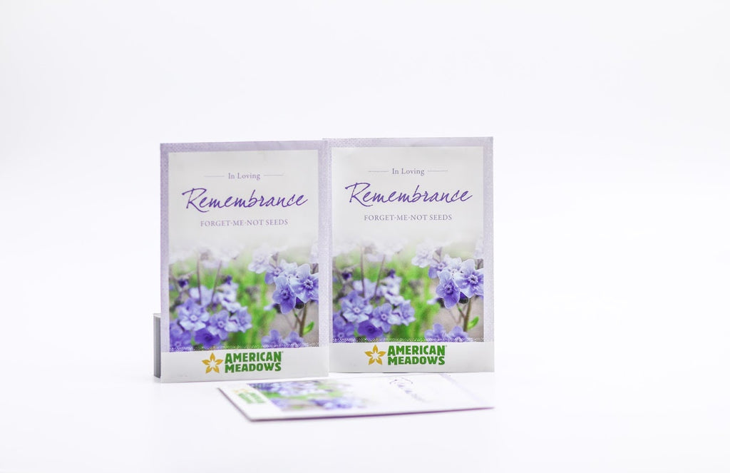 Forget-Me-Not Flower Seed Packet