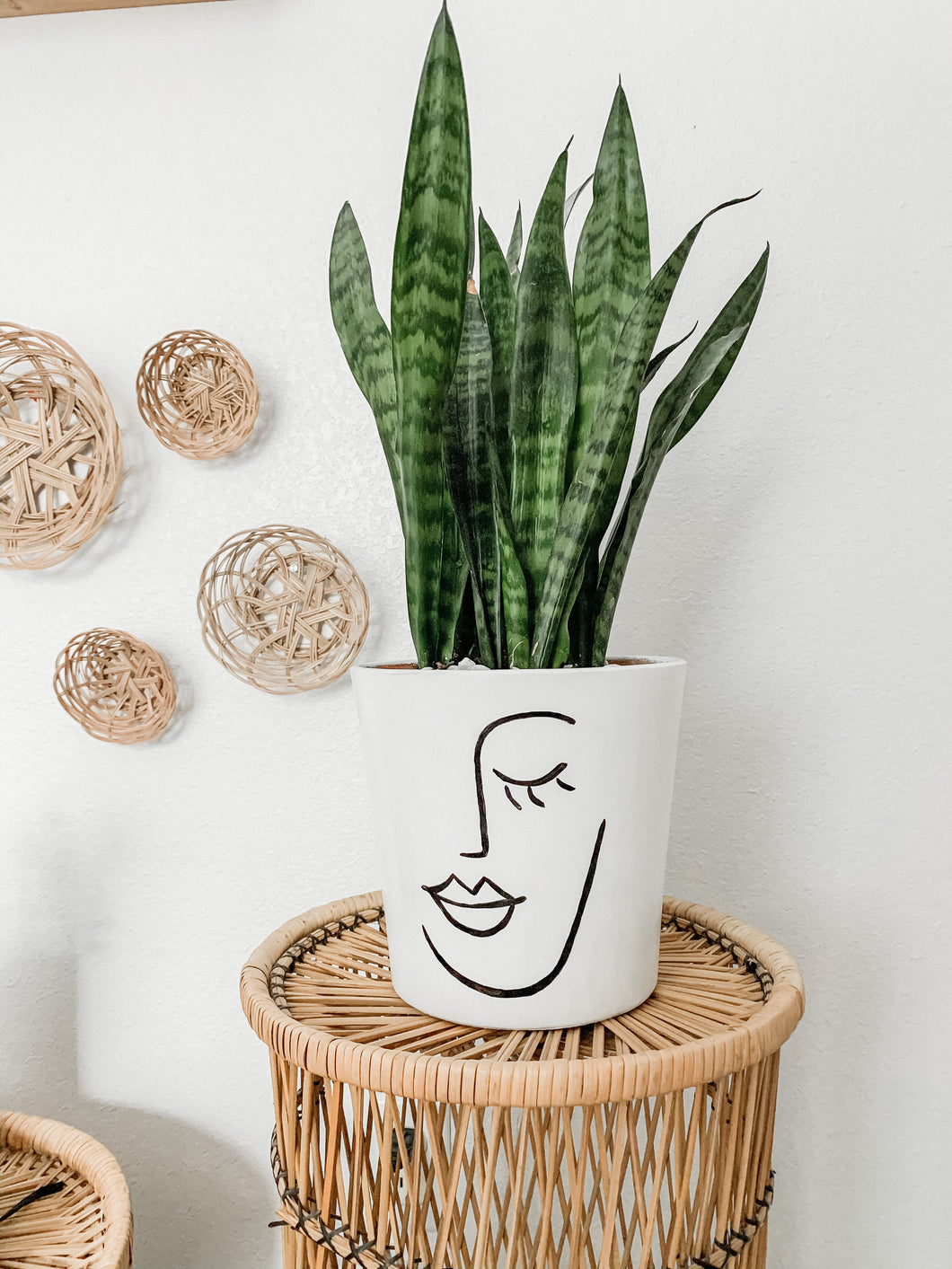 Painted face planter