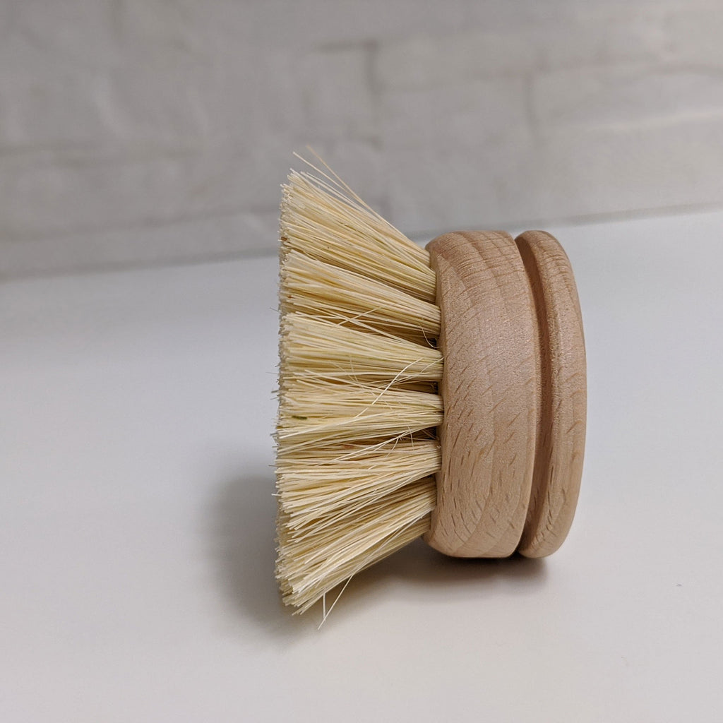 Replacement Head - Dish Brush