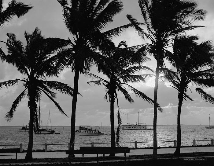 Biscayne Bay Sunset 1910 Print