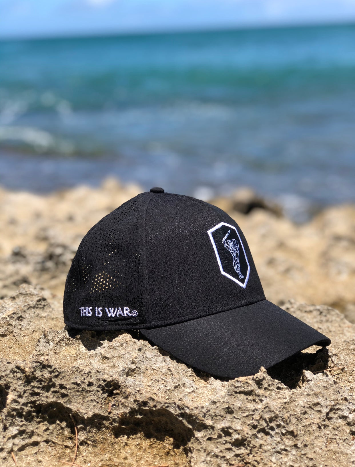 DRY FIT WARRIOR LOGO HAT