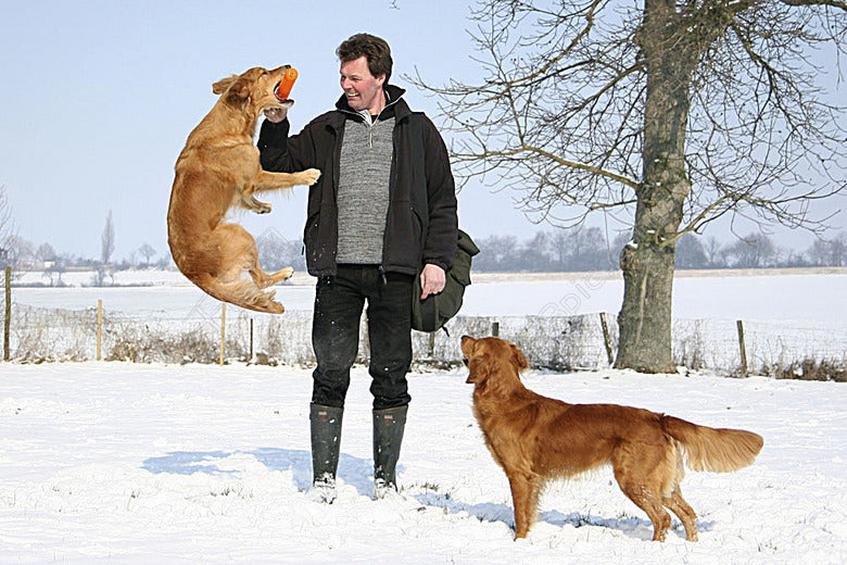 How to Interact With Dogs-Interact And Communicate Emotional Skills With Your Dog