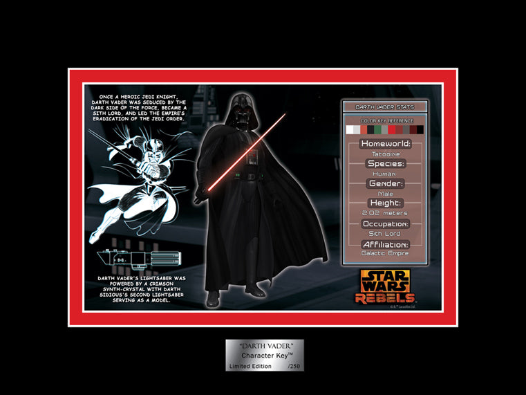 Darth Vader Character Key | Star Wars