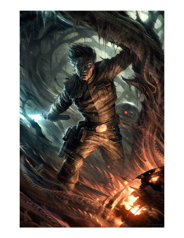Through the Fire by Raymond Swanland | Star Wars