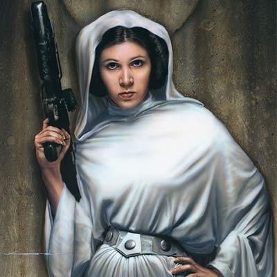 Rebel Princess by Jerry Vanderstelt | Star Wars