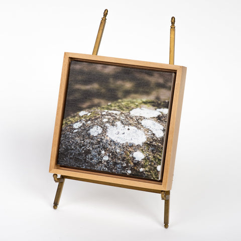 ANNA HERBST PHOTOGRAPHY Framed Photo on Canvas