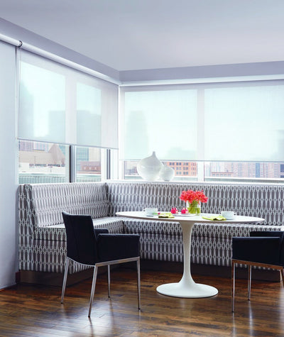 Hunter Douglas Screen Shade Roller Blind in REGION Dining Room Window