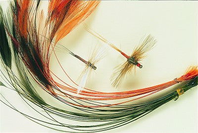 Stripped Hackle Quills