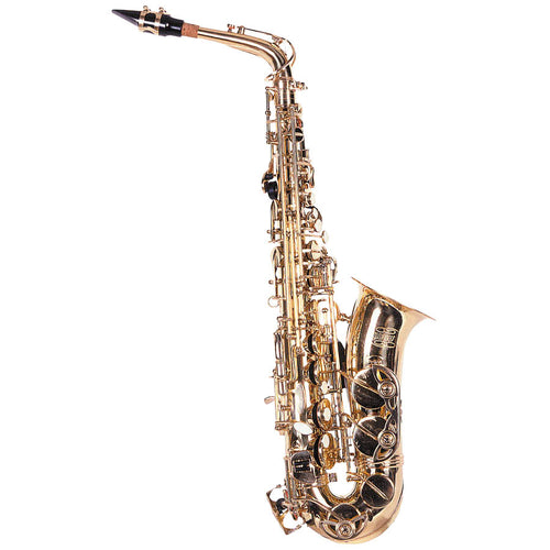 Alto Saxophone - Student by Lauren - benson-music-shop