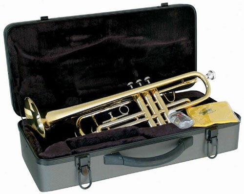 Brass Lacquered  B-Flat Trumpet - Lauren - benson-music-shop