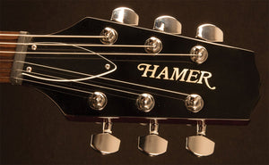Hamer 6 String Solid-Body Electric Guitar