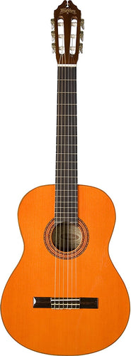 Classical Acoustic Guitar - Washburn - benson-music-shop