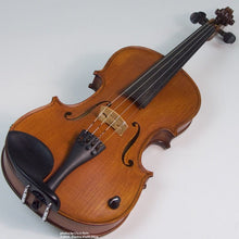 Load image into Gallery viewer, Barcus Berry BB-100 Legendary-series Acoustic-Electric Violin