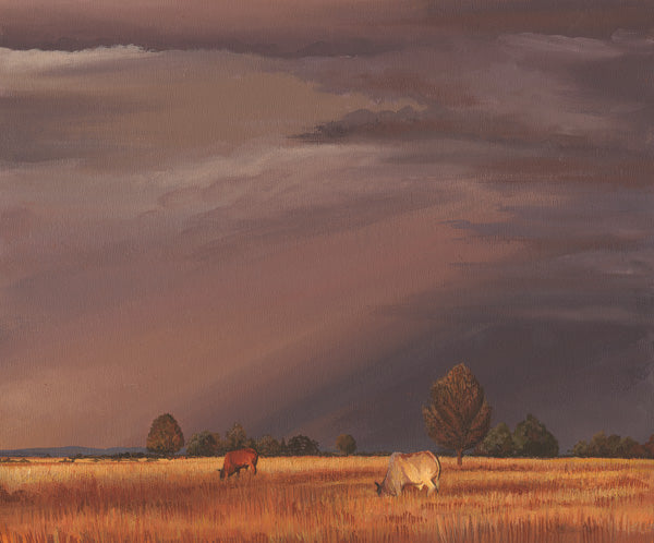Condobolin Storm - 2/40 Limited edition fine art print
