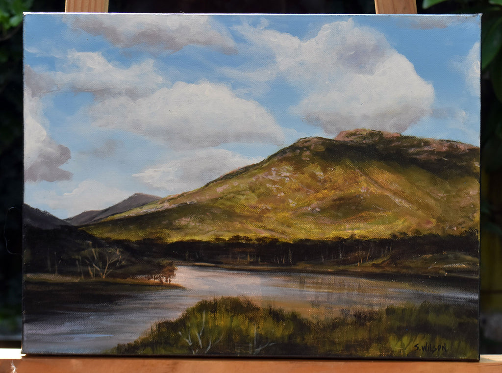 Wilsons Promontory - Original acrylic painting on stretched canvas.