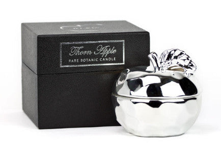 Silver Apple Candle