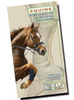 Equine Joint Injection and Regional Anesthesia