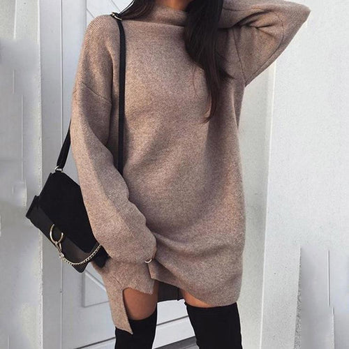 High Neck  Plain  Batwing Sleeve Sweater