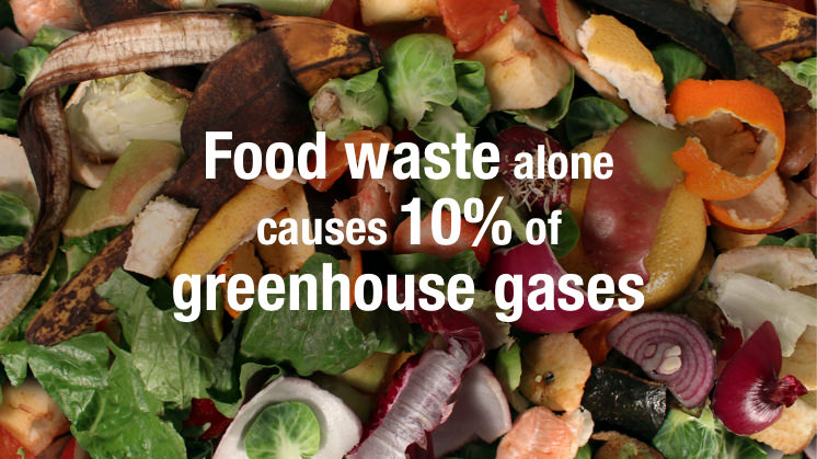 Lets have a conversation about food waste......