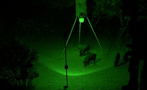 Kill Light® OUTFITTER Solar Powered Motion Activated Feeder Light